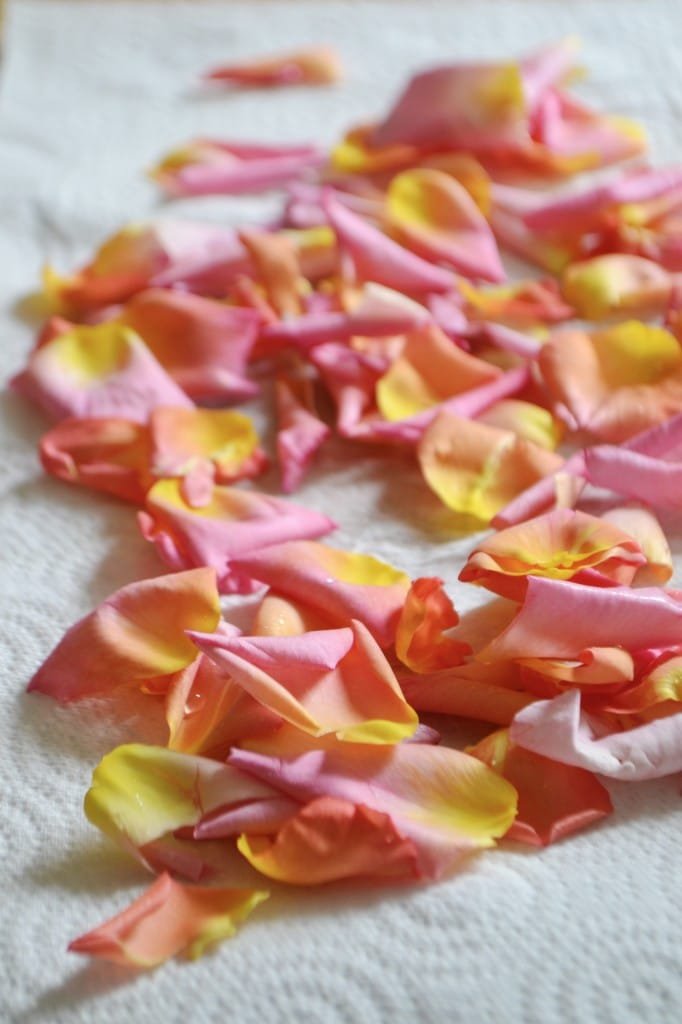 Make your own rose water in 20 minutes