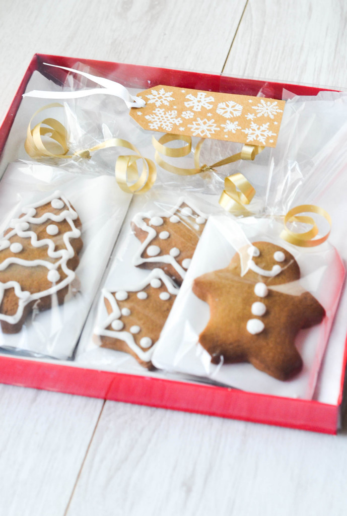 DIY Christmas Treat Bags - Great for presenting cookies