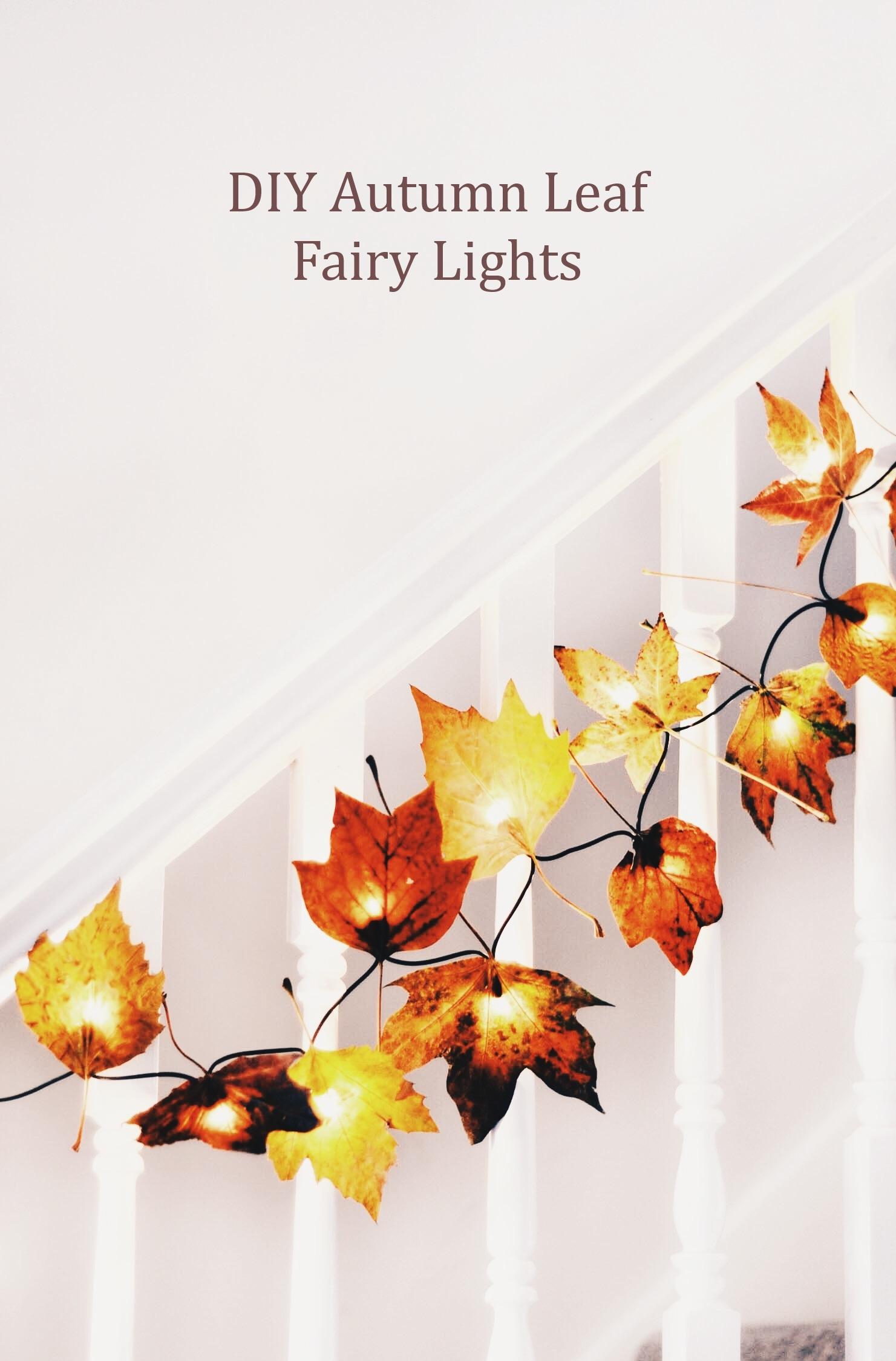 Diy autumn leaf fairy lights wallflower kitchen for Autumn leaf decoration