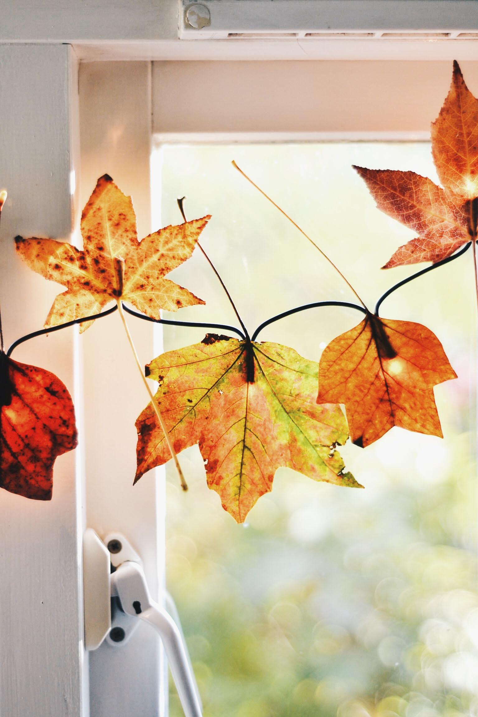 Diy Autumn Leaf Fairy Lights Wallflower Kitchen