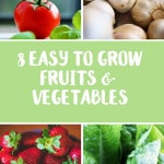 8 Easy-To-Grow Fruits & Vegetables