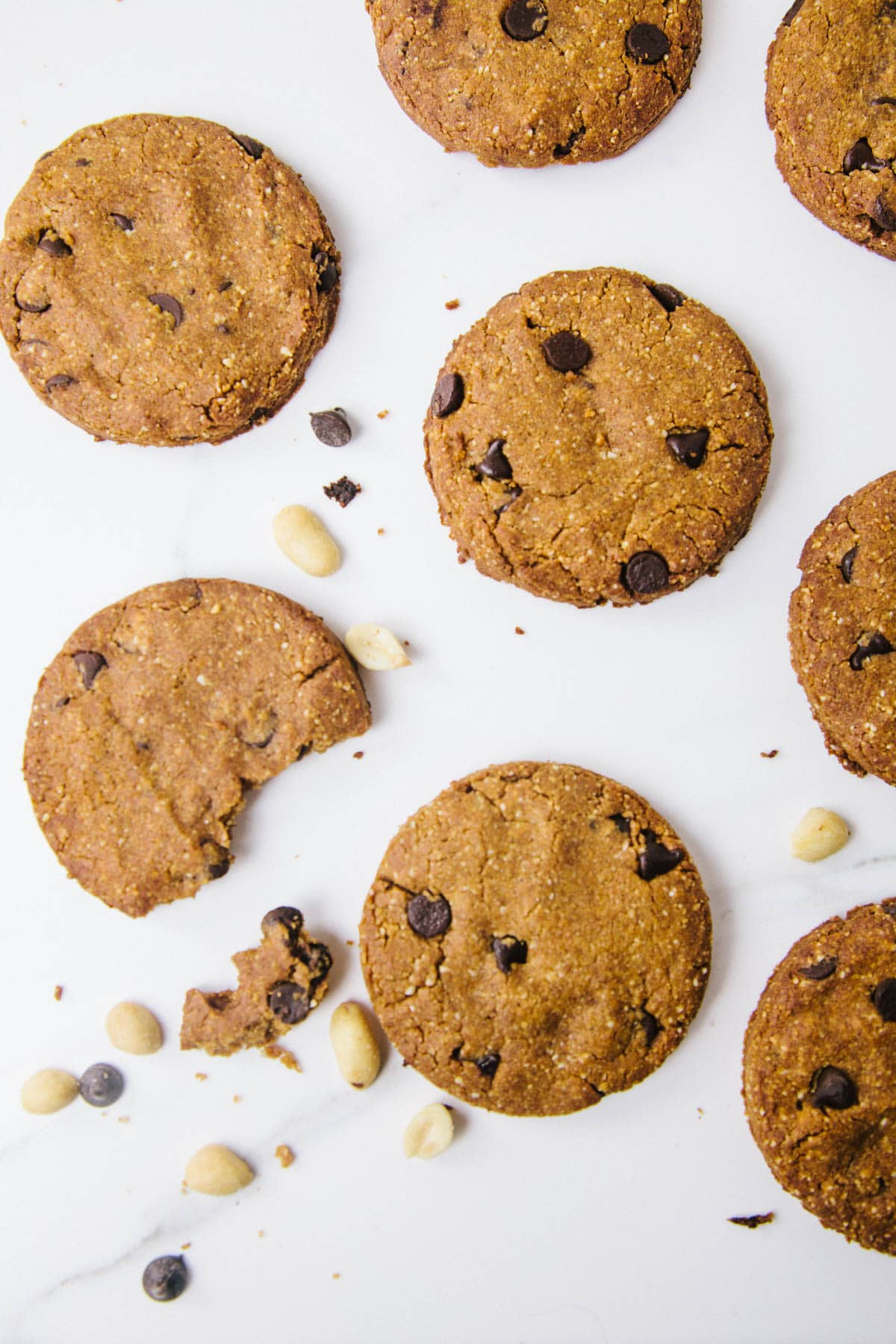 Low Carb Peanut Flour Chocolate Chip Cookies (Vegan / Grain free / Sugar free)